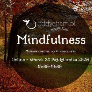 wprowadzenie do mindfulness